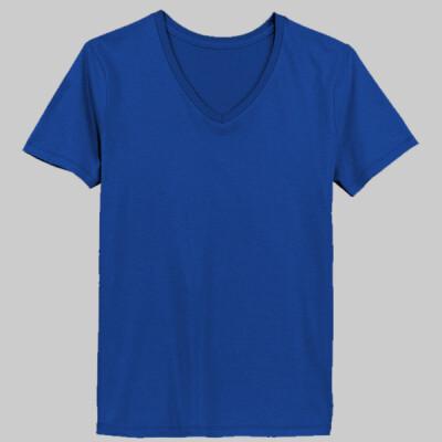 0889ccf85b0 LAT 3587 Ladies  Combed Ringspun V-Neck T-Shirt - Morche Designs ...
